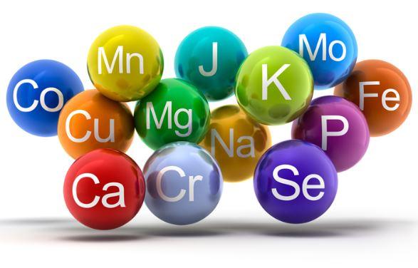 Oligoelementos. Son metales o metaloides presentes en dosis infinitesimales en los seres vivos